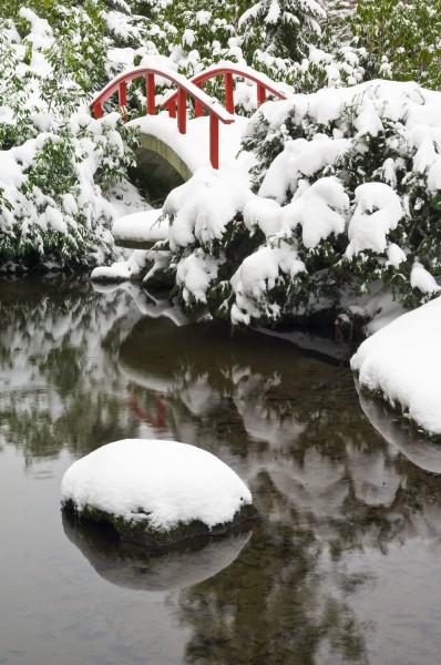 Уход за прудом зимой