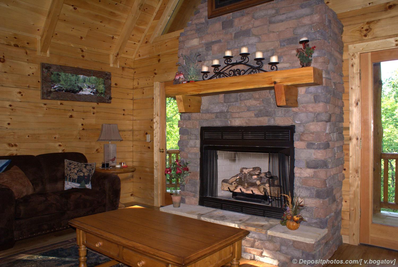Варианты каминов для деревянного дома по типам топлива 28